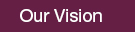 our_vision